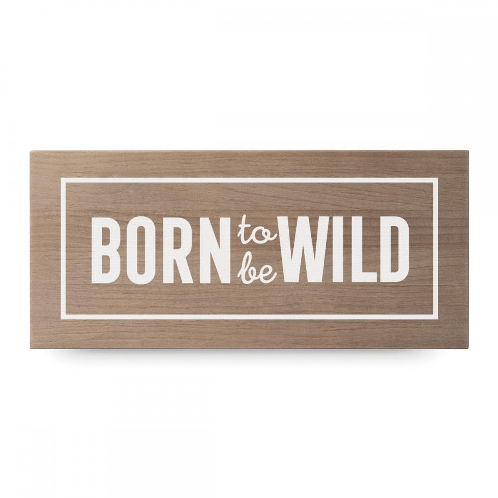 Born to be wild 1