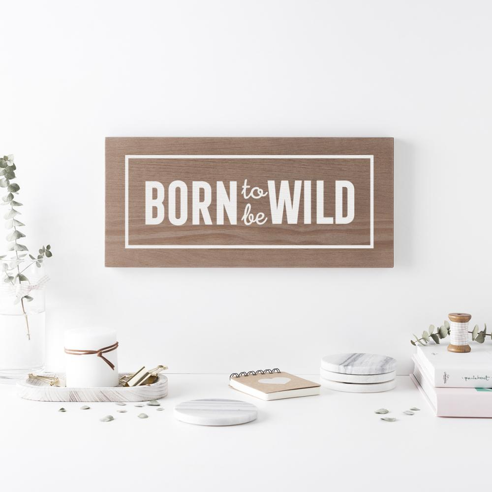 Born to be wild 2